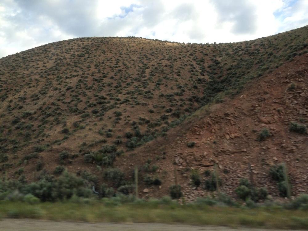 Beauty in the High Desert (2/2)